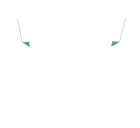 wicked tenants retro logo